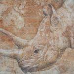 Rhino 岡本志保