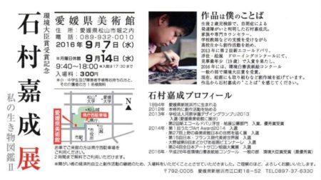石村嘉成展 私の生き物図鑑