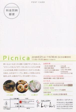 Picnica