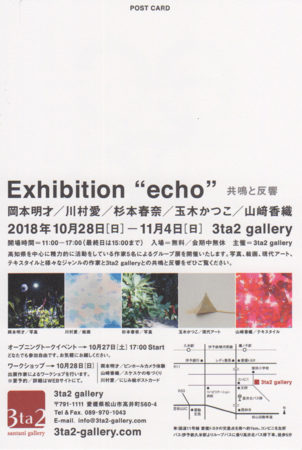 Exhibition echo