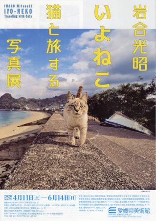 岩合光昭 いよねこ -猫と旅する写真展-
