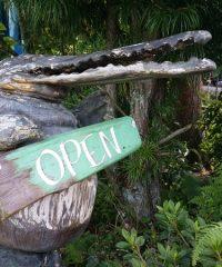 木と石と土の店「いってんもん」